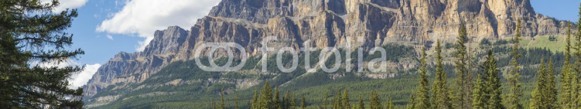 93437020 – Canada – Bow River and Castle Mountain Banff National Park