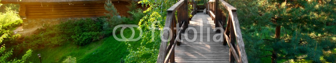 93474774 – Ukraine – Decorative bridge