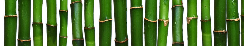 Скинали для кухни Стебли бамбука