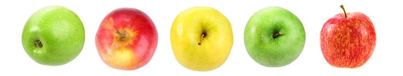 Фартук для кухни Яблоки разных сортов