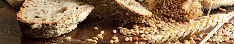 Кухонный фартук Пшеница и хлеб