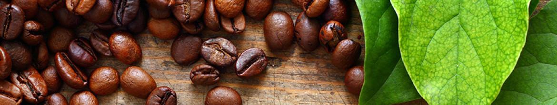 Скинали для кухни Листья и кофейные зерна