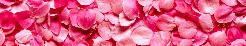 Скинали Лепестки роз